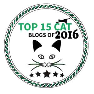 TOP CAT BLOG 2016