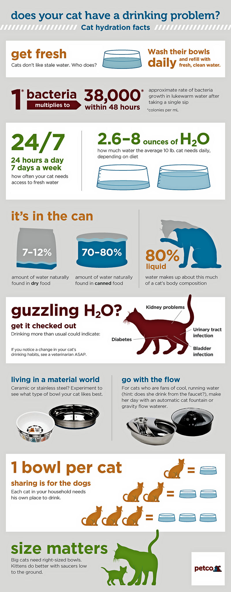 Dehydration can be Deadly for Cats - The Purrington Post