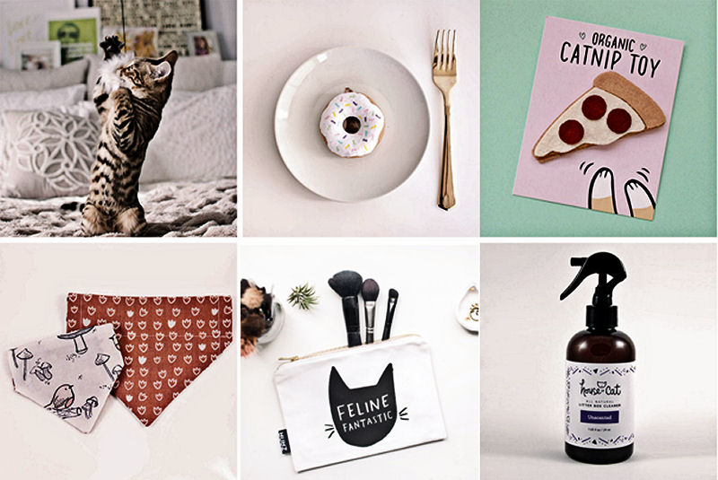 Cat themed gift sets the purrington post