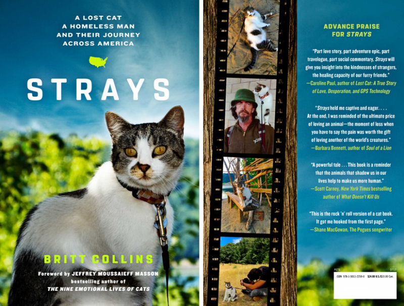 Strays the book