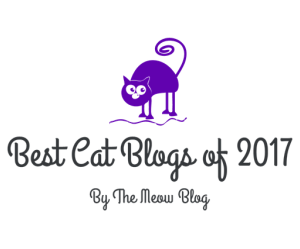 TOP CAT BLOG 2017