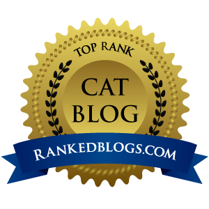Top Cat Blogs of 2017