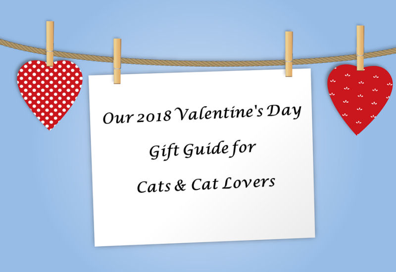 And now, without further ado, here's our 2018 Gift Guide (in no purrticular  order) for those special cats you adore and the paw-some people who worship  and ...
