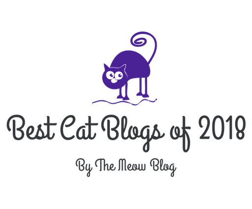 TOP CAT BLOG 2018