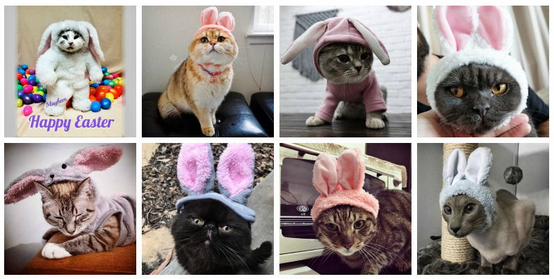 Easter gift guide for cat lovers the purrington post negle Choice Image