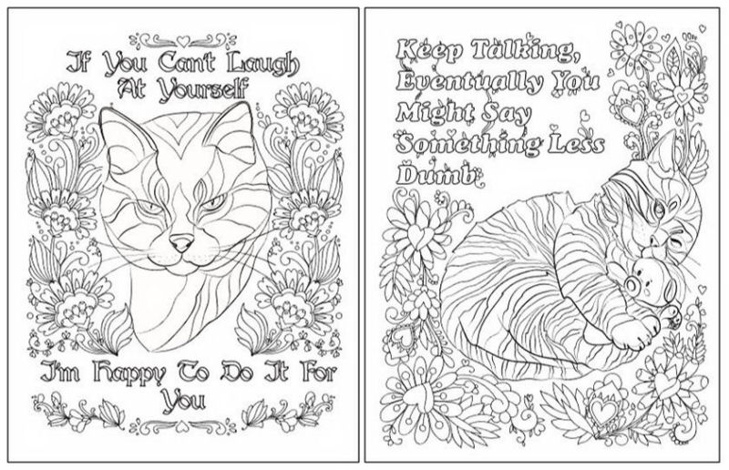 - Hater Cats: An Insult Kitten Coloring Book - The Purrington Post