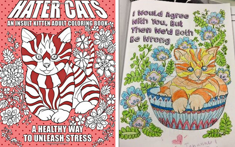 Hater Cats: An Insult Kitten Coloring Book - The Purrington Post