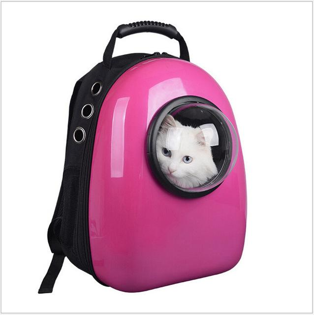 ac71dc06b1d Make Every Trip an Adventure with a Cat Backpack - The Purrington Post