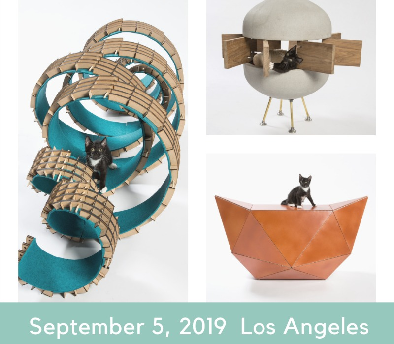 "Architects for Animals - ""Giving Shelter"" Exhibit for Cats - The Purrington Post"